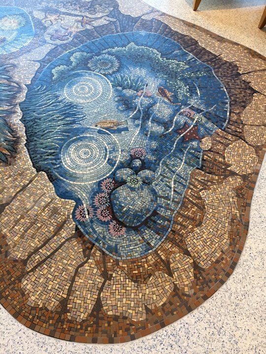 detail of tide pool mosaic