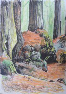 Redwood Forest Burl Sketch