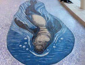 Elephant Seal Mosaic