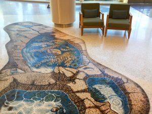 Kelp tidepool floor mosaic