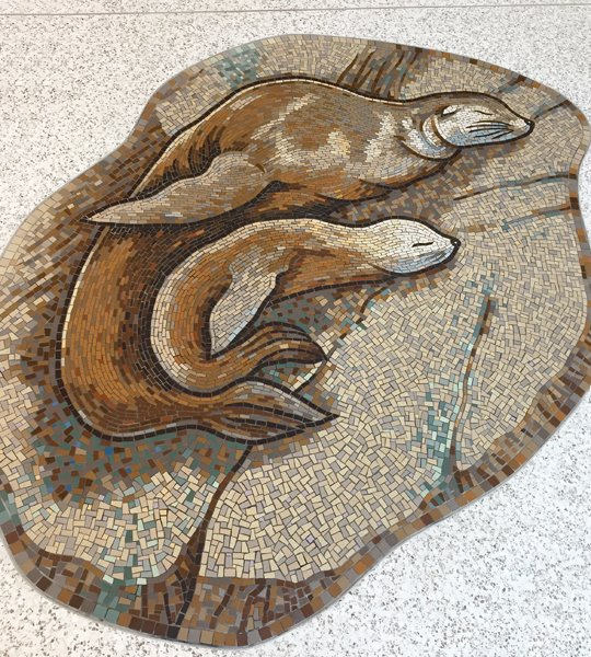 Sea Lion and pup mosaic