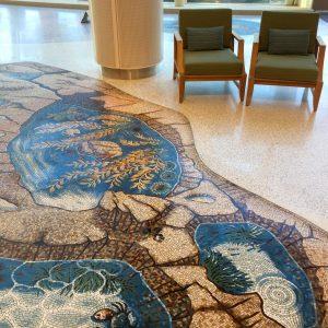 Kelp tidepool mosaic LPCH