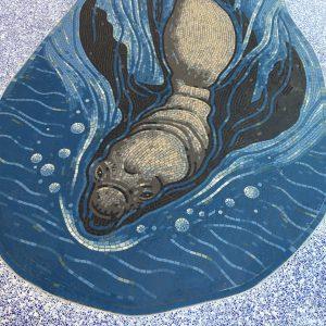 LPCH Elephant Seal mosaic
