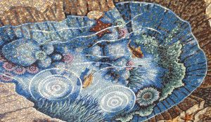 LPCH rock pool mosaic